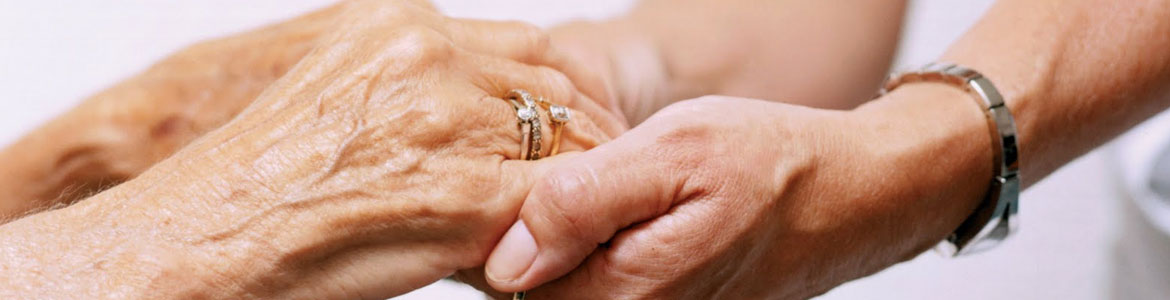 What does Guardianship mean?